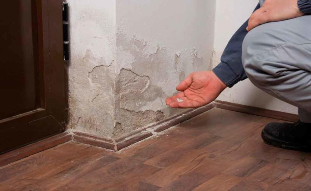 que poner en una pared con humedad
