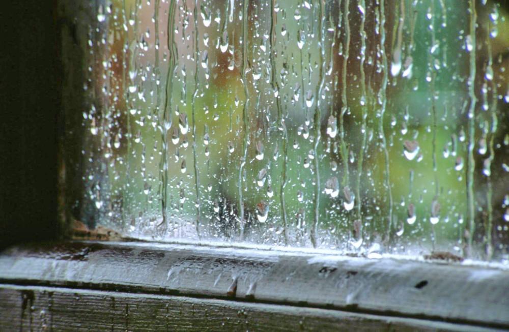 la-primavera-y-las-humedades