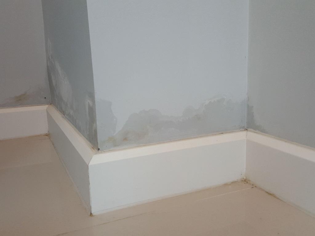 como-reparar-paredes-con-humedad-ascendente (3)