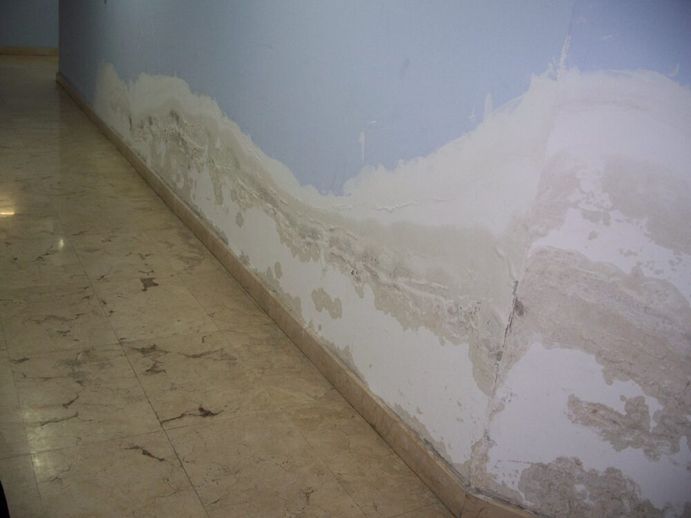 Cómo arreglar una pared con moho