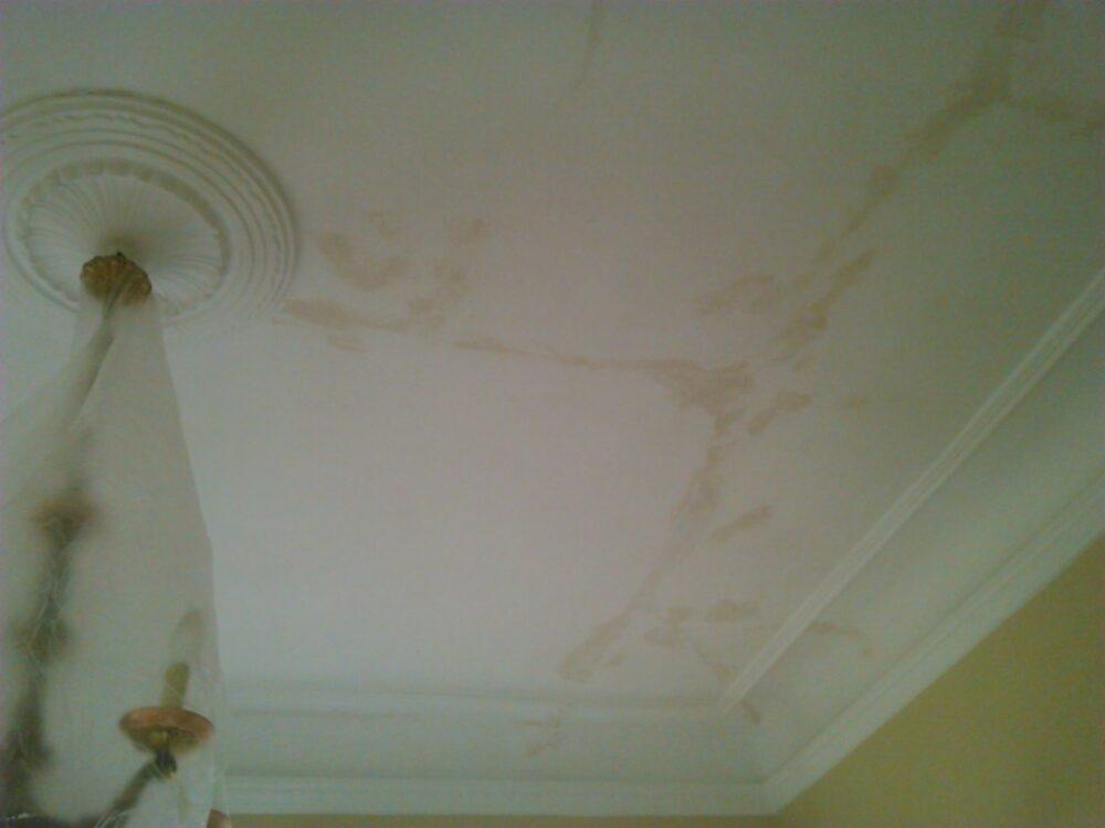 como-quitar-las-manchas-de-humedad-en-techos-de-escayola