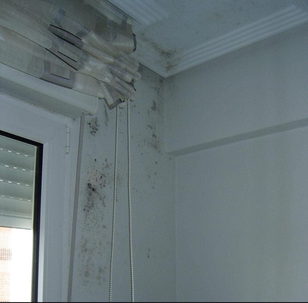 humedades-por-condensacion-y-puente-termico