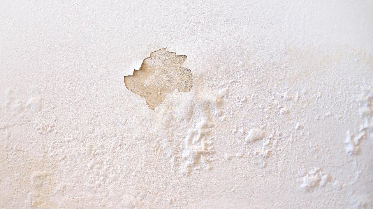 Cómo eliminar la humedad de la pared